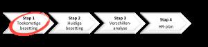 Aanpak strategische personeelsplanning